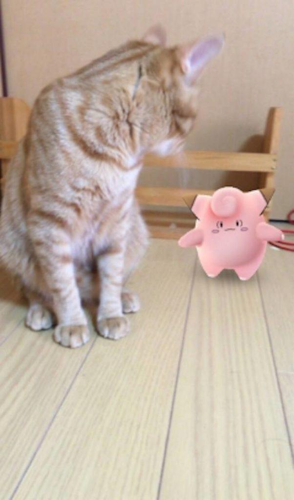 Pokemon-Animais-25-602x1024