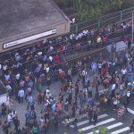 Cão atrapalha a circulação do Metrô em São Paulo ao andar pela linha do trem