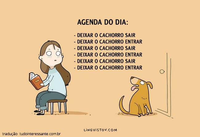 coisas-donos-cachorros-entendem-9