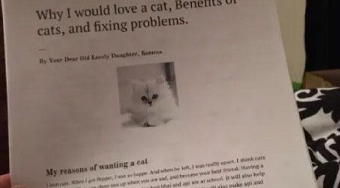 Garota cria relatório de 6 páginas para convencer pais a ter gato