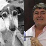 Vereador sugere comer cães de rua para diminuir número de animais
