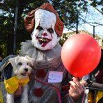 Nova York tem desfile canino de fantasias de Halloween
