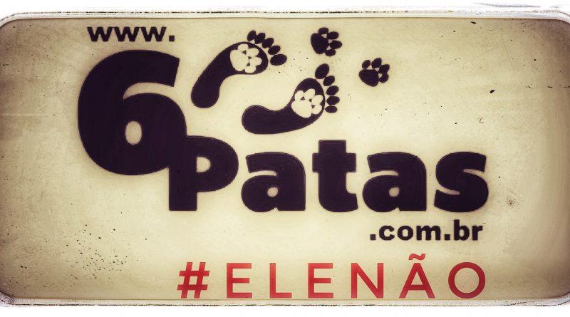 [EDITORIAL] Se você é ativista da causa animal, #EleNão é