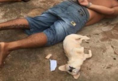 """Cachorrinha """"se entrega"""" à polícia durante prisão do dono por tráfico"""