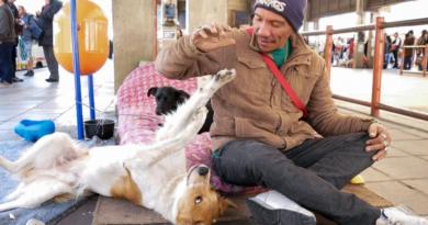 Curta-metragem abordará afeto entre cães e pessoas em situação de rua