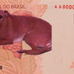 Abaixo-assinado pede vira-lata caramelo nas notas de R$ 10