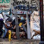 Cão que lutou ao lado dos manifestantes no Chile é adotado