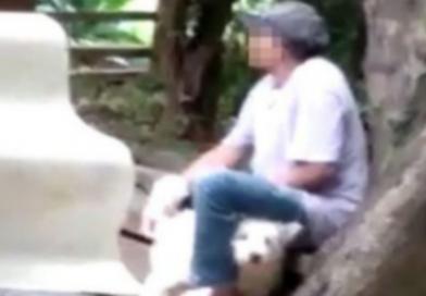Homem é preso ao ser flagrado abusando sexualmente de um cachorro