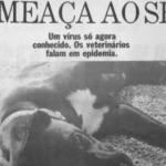 Cães foram vítimas de coronavírus nos anos de 1980